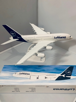Boeing 737 MAX Luggage Tag