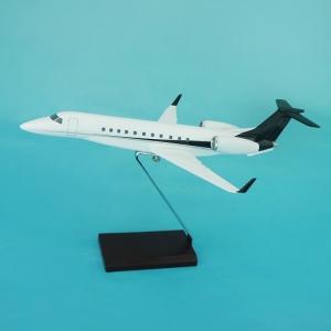50 x Modellflugzeug in Ihrer Wunschlackierung