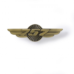 Boeing 757 Wings Pin
